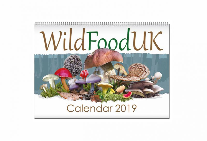 Greatest British Foraging calendar cover framed