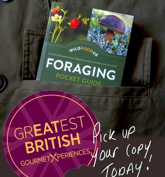 Foraging-Guide